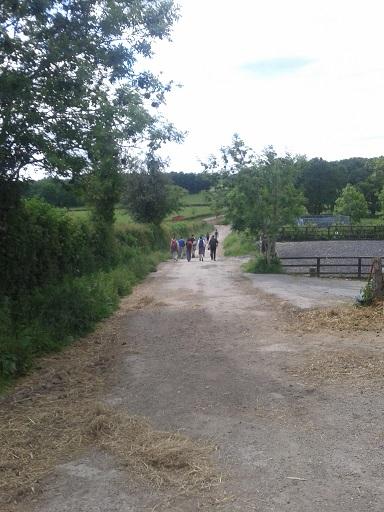 Borde Hill 3
